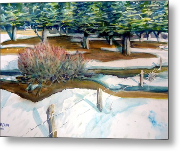 The Spring Thaw Metal Print