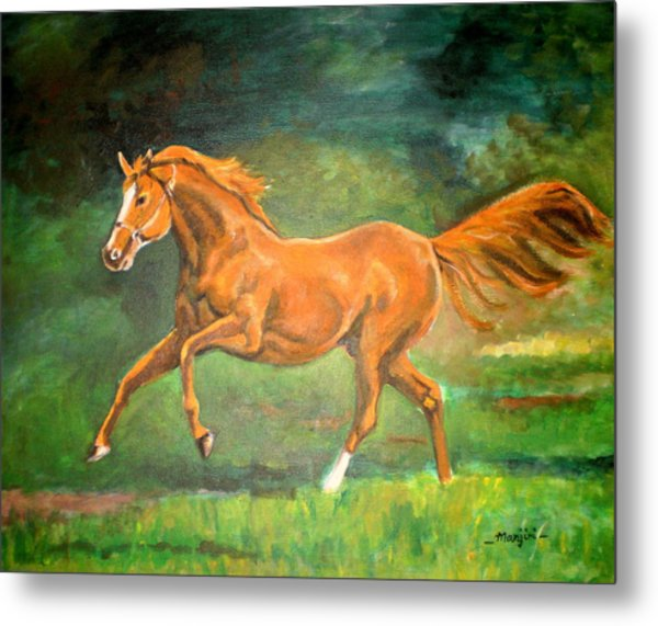 The Stallion-horse Art Painting  Metal Print
