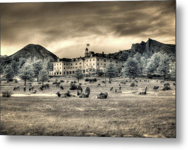 The Stanley With Elk Ir Metal Print