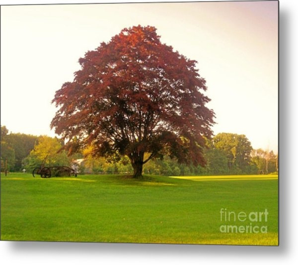 The Storybook Tree Metal Print