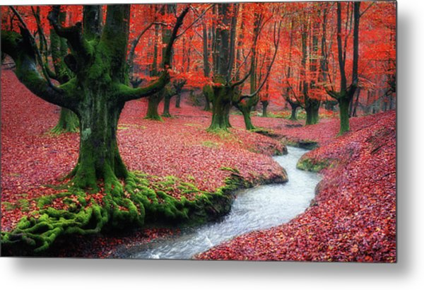 The Stream Of Life Metal Print