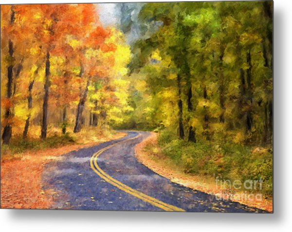 Metal Print featuring the photograph The Sunny Side Of The Street by Lois Bryan