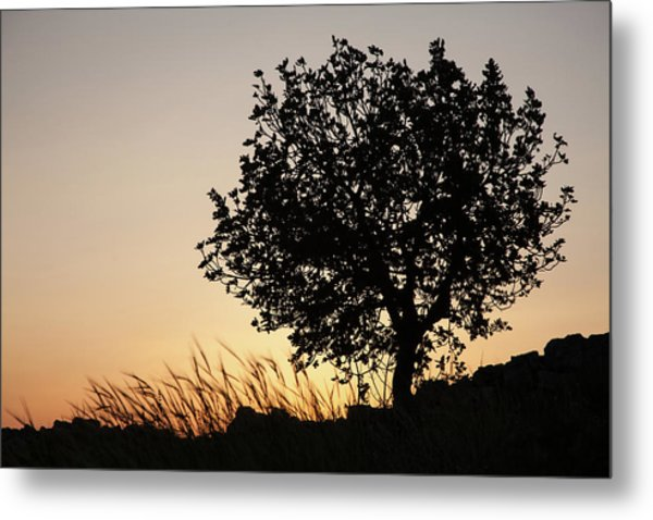 Sunset On The Hill Metal Print
