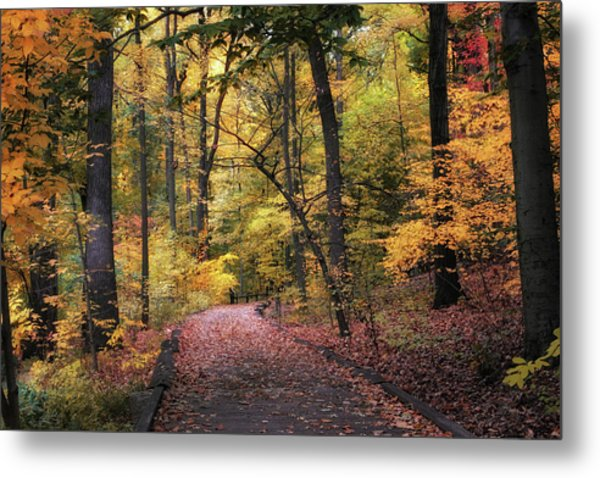 Metal Print featuring the photograph The Thain Forest by Jessica Jenney