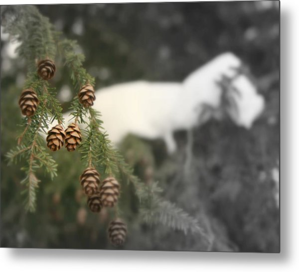 The Thaw Metal Print by Robert Babler