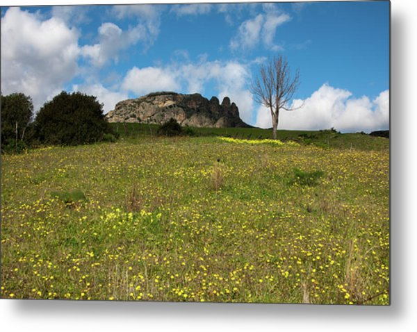The Three Finger Mountain Metal Print