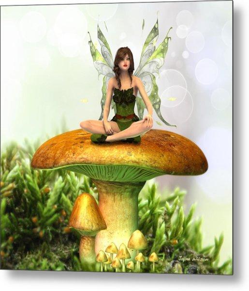 The Toadstool Fairy Metal Print