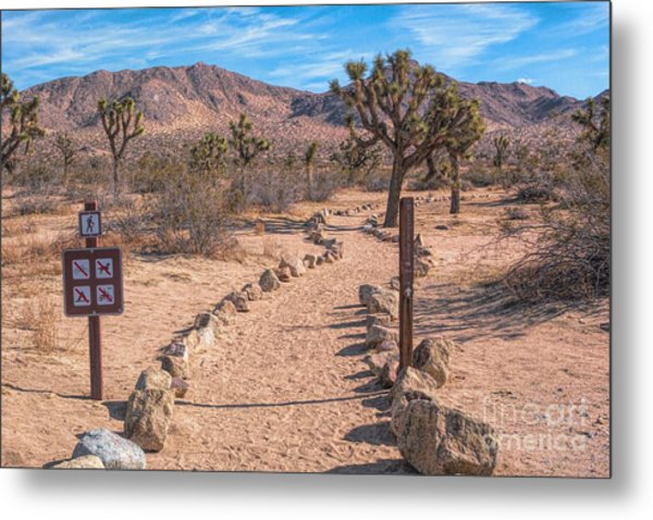 The Trailhead Metal Print