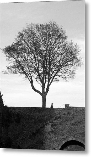 The Tree Metal Print by Jez C Self