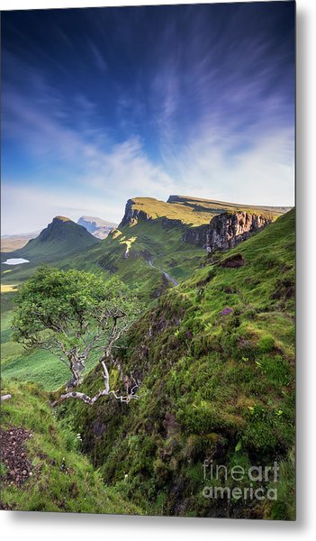 The Trotternish Tree Metal Print