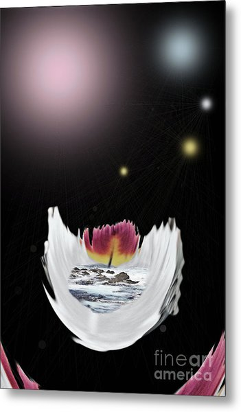 The Universe Metal Print by Sharon Broucek