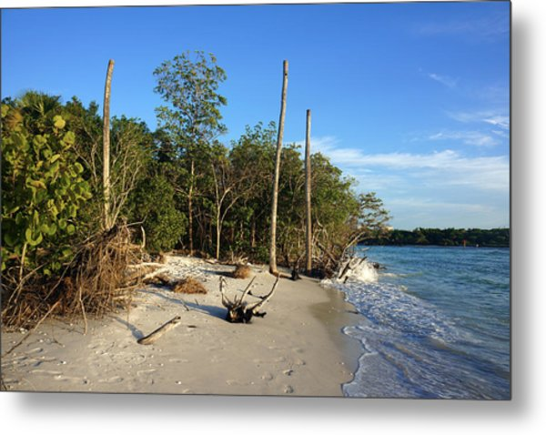 The Unspoiled Beauty Of Barefoot Beach In Naples - Landscape Metal Print