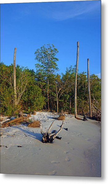 The Unspoiled Beauty Of Barefoot Beach In Naples - Portrait Metal Print