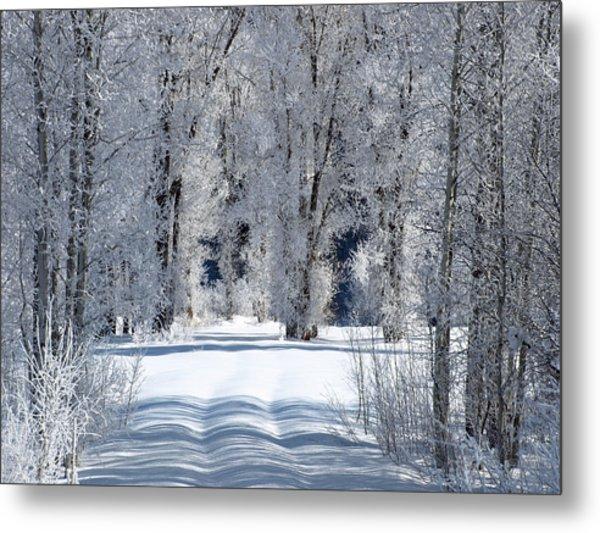 The Untraveled Winter Road Metal Print