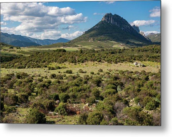 The Urzulei Mountains Metal Print