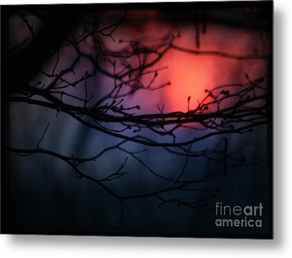 The Warm Light Metal Print by Angel Ciesniarska