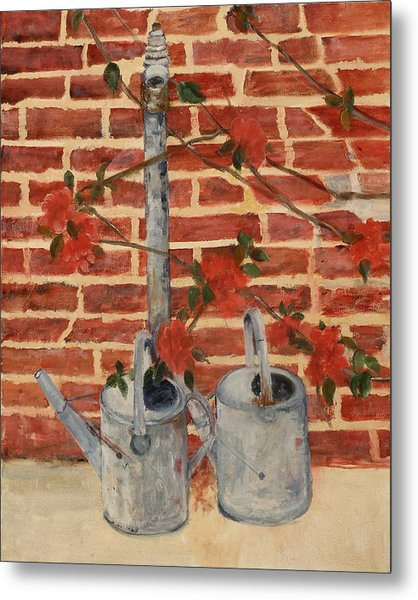 The Watering Cans Metal Print by Betty Stevens