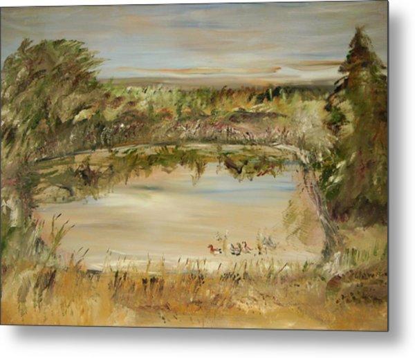 The Westfern Pond Metal Print by Edward Wolverton