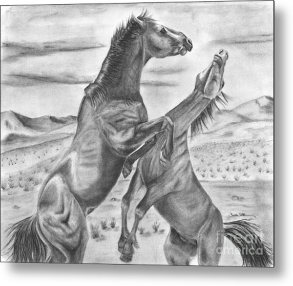The Wild West Mustangs Metal Print by Russ  Smith