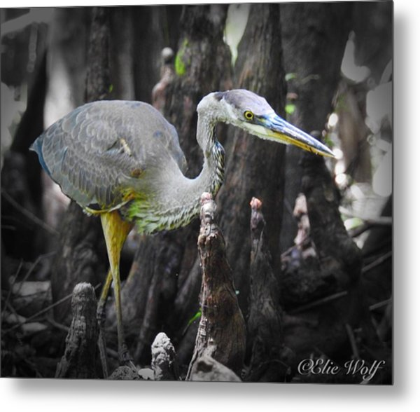 The Winged Stalker Metal Print