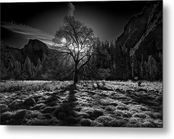 The Winter Spirit Metal Print