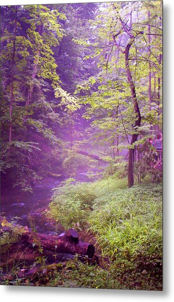 The Wonder Of Nature  Two Metal Print