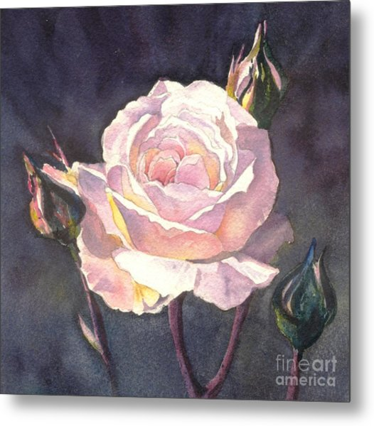 Thea's Rose Metal Print