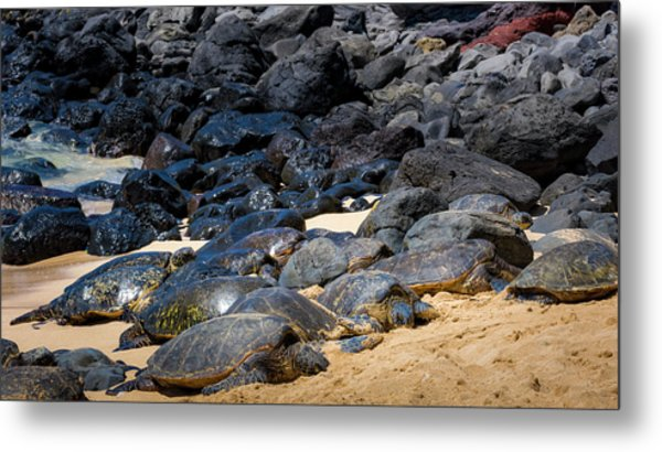 Metal Print featuring the photograph There Has Got To Be More Room On This Beach  by Jim Thompson