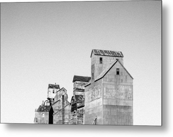 They Still Stand Guard Metal Print