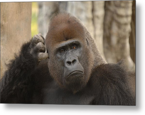 Think About It Metal Print by Keith Lovejoy