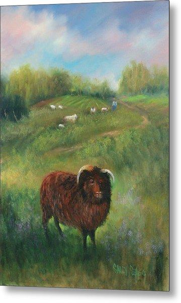 Thinking Of Ewe Metal Print by Sally Seago