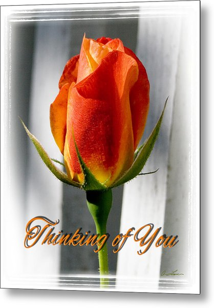Thinking Of You, Rose Metal Print