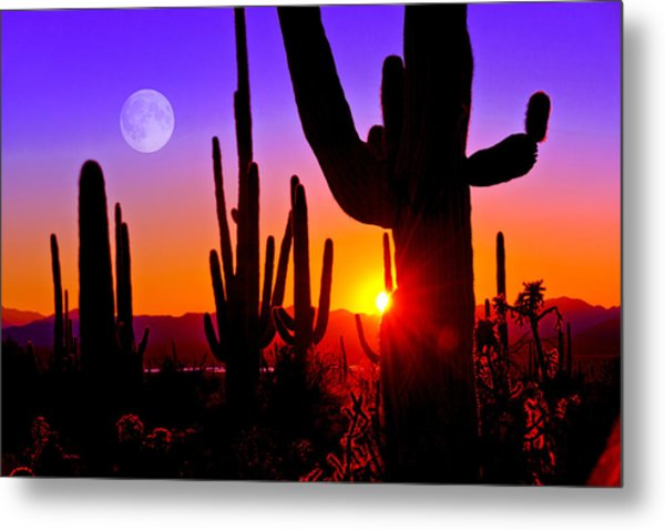 Third Sunset At Saguaro Metal Print