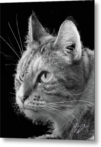 This Is Emma Metal Print