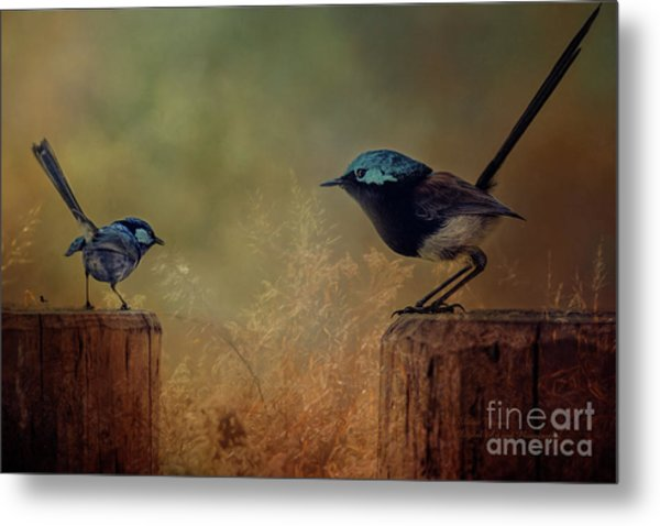 This Is My Perch Metal Print