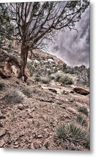 This Is Utah No. 9 - Morning At Williams Arch Metal Print by Paul W Sharpe Aka Wizard of Wonders