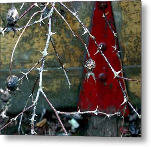 Thorns And Red Triangle Metal Print