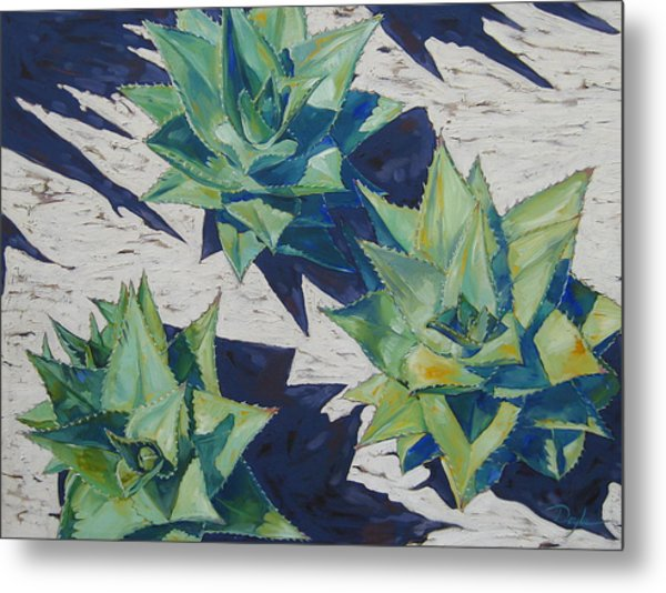 Three Aloe Metal Print by Karen Doyle