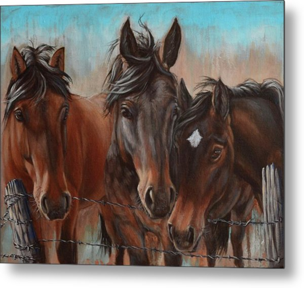 Three Curious Friends Metal Print