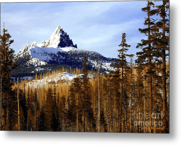 Three Fingered Jack Metal Print