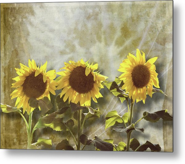 Three In The Sun Metal Print