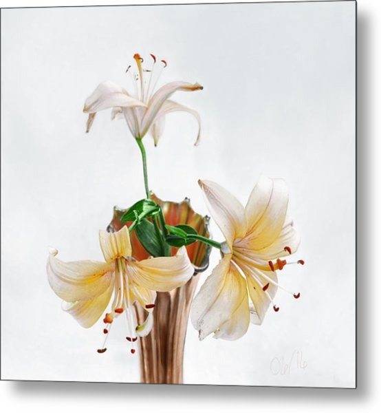 Three Pale Gold Lilies Still Life Metal Print