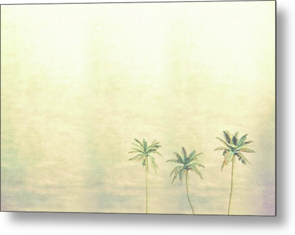 Three Palms In Color Metal Print