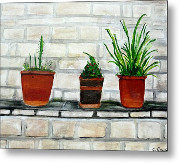 Three Pots Metal Print by Cathy Jourdan