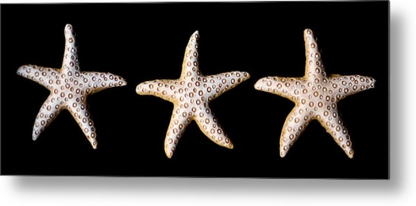 Three Stars - Sepia Metal Print