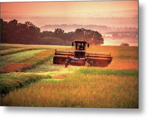 Swathing On The Hill Metal Print