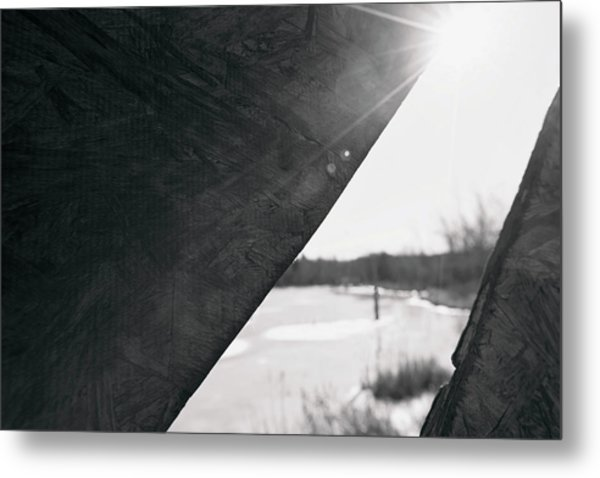 Metal Print featuring the photograph Through A Bird Blind by Sue Collura