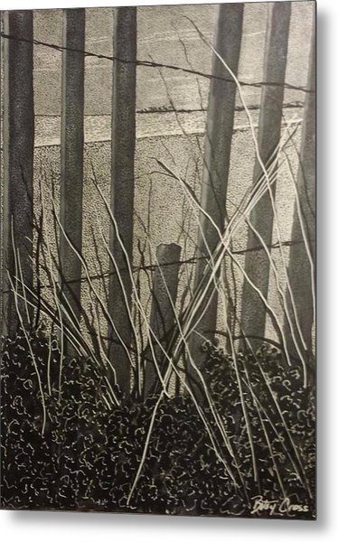 Through The Beach Fence Metal Print