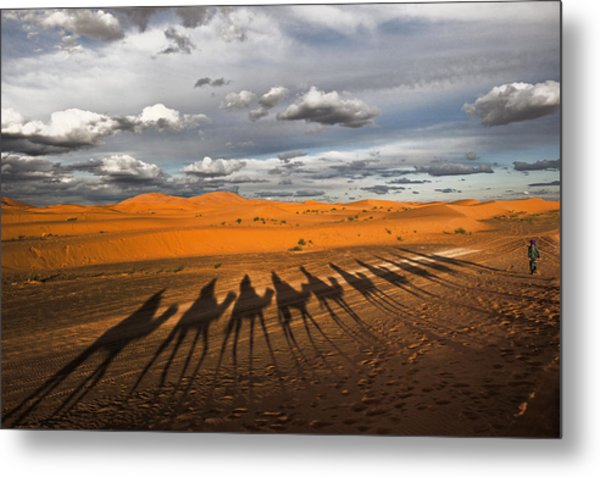 Through The Dunes Of Merzouga (morocco). Metal Print