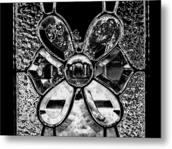 Through The Glass  2 Metal Print by Laura DAddona